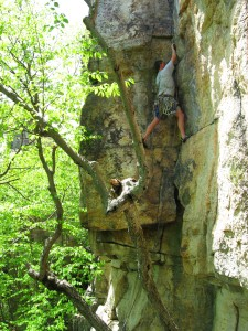 Lost City Agent Orange 5.8+